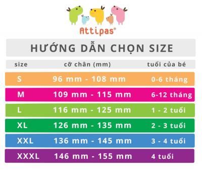 Size giầy Attipas - Giầy chức năng cho bé tập đi attipas.vn